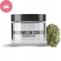 Susz Watermelon Cookies CBD 1g